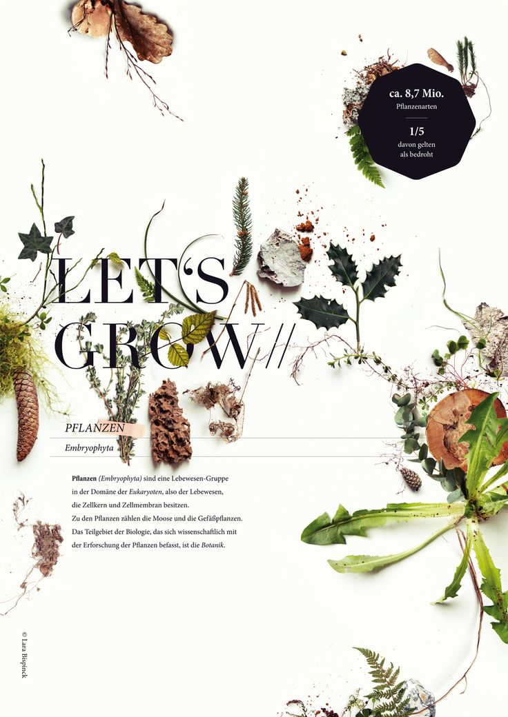 """With my botanical poster """"LET'S GROW"""" I participated on a BOTANICAL POSTER CONTEST.  It would be great if you could support me and vote for my Botanical poster (Nr. 099) until 30 April 2016. https://humanempire-voting.de/   #botanical #poster #larabispinck #grow #growing #plants #photography #leaves #wood #forest #collection #graphicdesign #typography #poster #print #nature #letsgrow #everywhereyougo"""