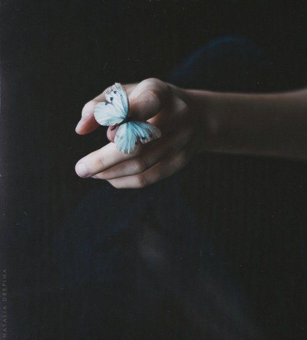 Ramshackle wings by NataliaDrepina.deviantart.com on @deviantART