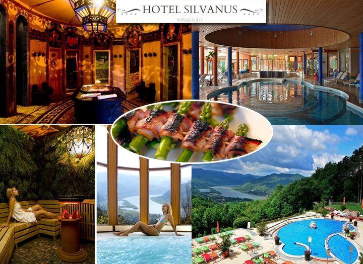 Wellness (pl. masszázs, fürdő belépő) Kupon - 50% kedvezménnyel - Wellness (pl. masszázs, fürdő belépő) - A tökéletes program egész évben Visegrádon a Silvanus Hotelben! Korlátlan étel és italfogyasztás + wellness használat 1 felnőtt részére kedvező áron most 7 990 Ft-tól!.