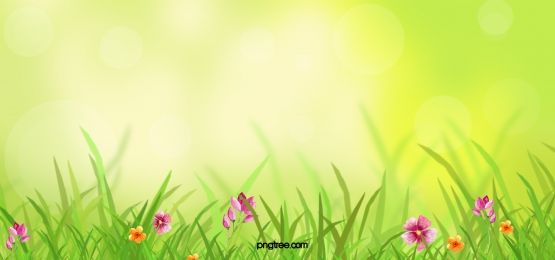 taobao lynx spring fantasy background design 2020 배경 템플릿 꽃 나비 디자인 pinterest