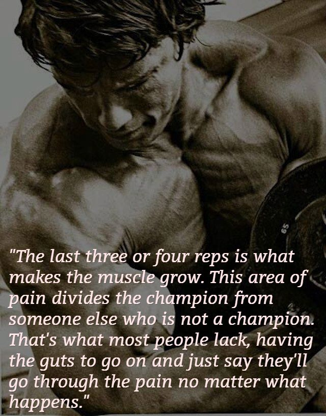 Pain Divides A Champion. #Quote