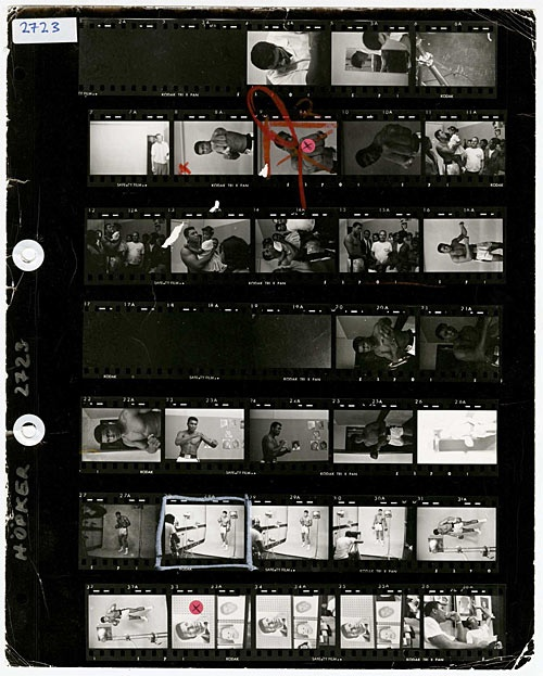 203 best Contact Sheets images on Pinterest Posing guide, Photo - sample contact sheet