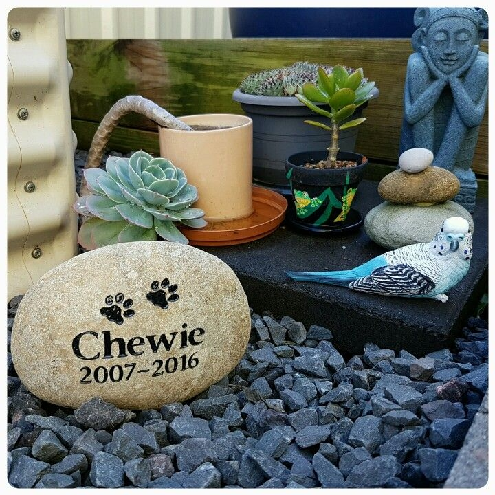 Beautiful memory rock for Chewie made by Talking Stones