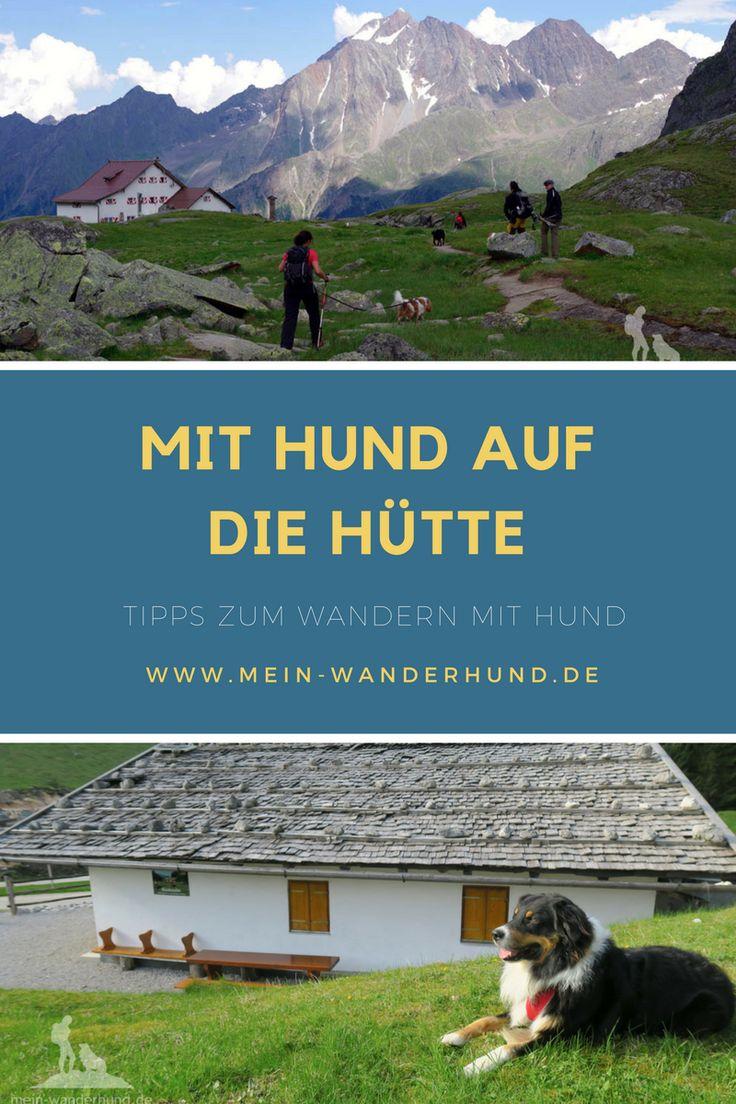 Mit Hund auf die Hütte #wandernmithund