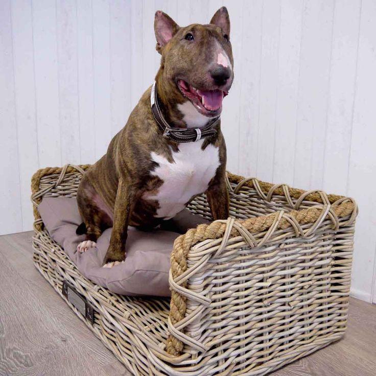 De Happy-House rieten #hondenbank is een heerlijke mand voor uw #hond. De rand van deze rechthoekige mand is afgewerkt met een stoer touw. Een aanwinst in uw #interieur en van hoge kwaliteit. Welke hond wil daar nu niet in liggen?