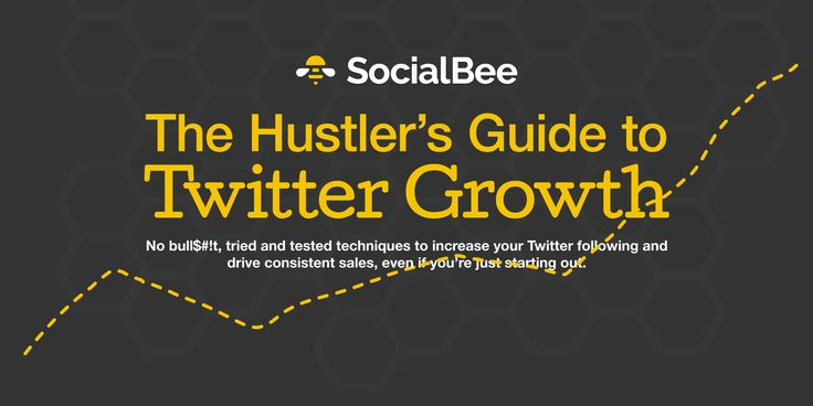 The Hustler's Guide to Twitter Growth | SocialBee
