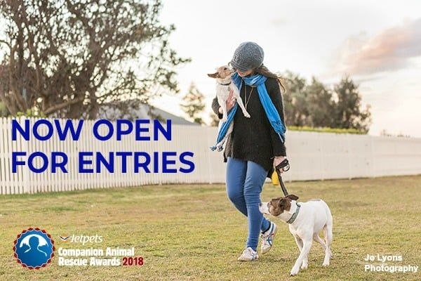 Open For Entries The Inaugural Jetpetsrescueawards2018 Are Officially Open For Entry We Welcome Rescue G Animal Companions Cute Dog Pictures Cute Funny Dogs