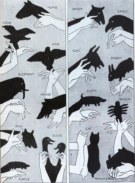 Fun with shadows for home entertainers via lemonharanguepie: Who doesn't love a good shadow show? This article from the January, 1930, issue of Modern Mechanics, covers the basics. #Kids #Hand_Shadows