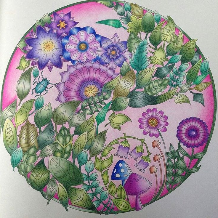 Prismacolor Johanna Basford Coloring Book Ps Porcelain Enchanted Forest Technical Drawing Draw Color