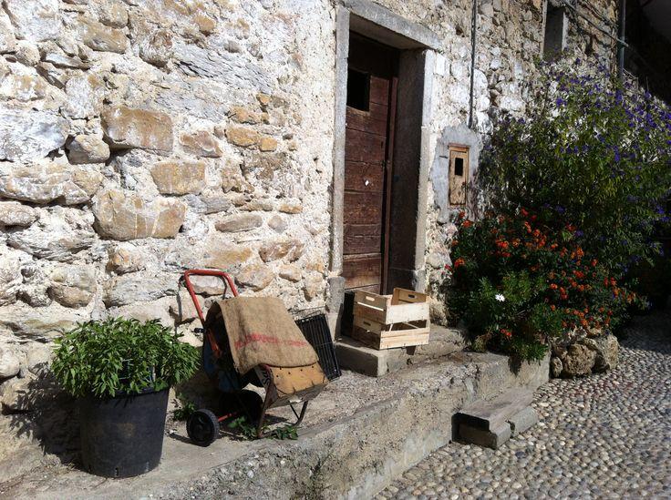 From Rocchetta Nervina, Liguria