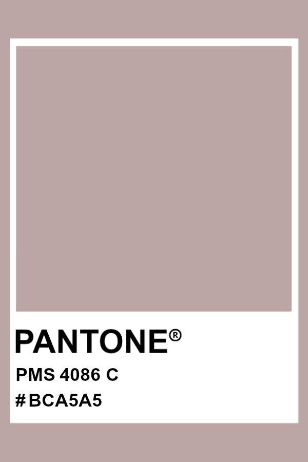 Pin By Ritab1 On Pantone In 2020 Pantone Colour Palettes Brown Pantone Pantone
