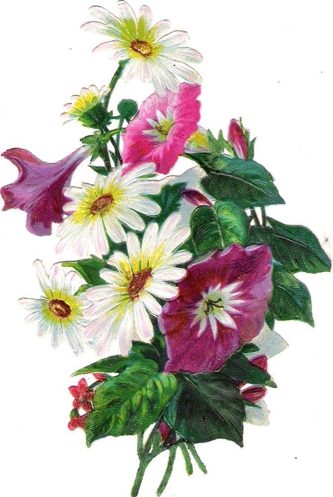 Oblaten Glanzbild scrap die cut chromo Blume  13cm flower fleur