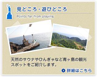 見どころ・遊びどころ 天然のサウナやひんじゃなど青ヶ島の観光スポットをご紹介します。