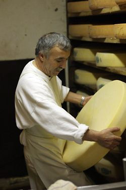Cheese Class.  Long article but interesting.