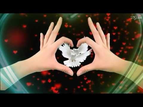Beautiful Love Creative Video Creative By Dg Beats Youtube Beautiful Love Creative Video Love Status Whatsapp
