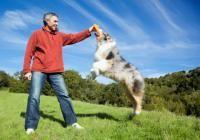 How to Calm a Hyper Dog   Cesar Millan