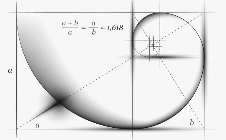 Golden Ratio Téma pro WordPress | Velryba-Kit