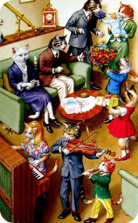 cats in clothes. great color: