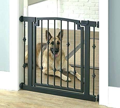 Best Indoor Dog Gates Lowes In 2020 Dog Gate Indoor Dog 400 x 300