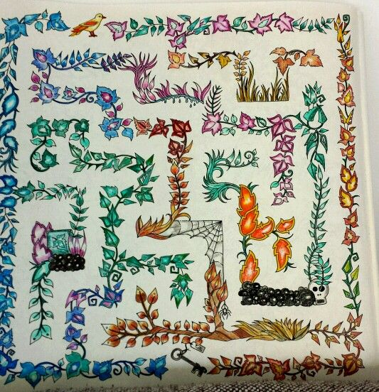 Coloured In Maze From The Enchanted Forest Book