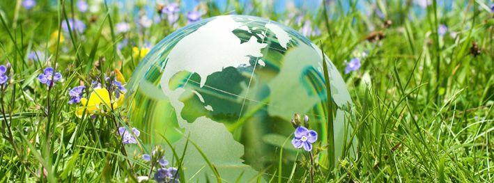 Completo respeito pelo meio-ambiente