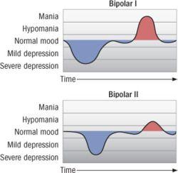 dsm 5 bipolar disorder pdf