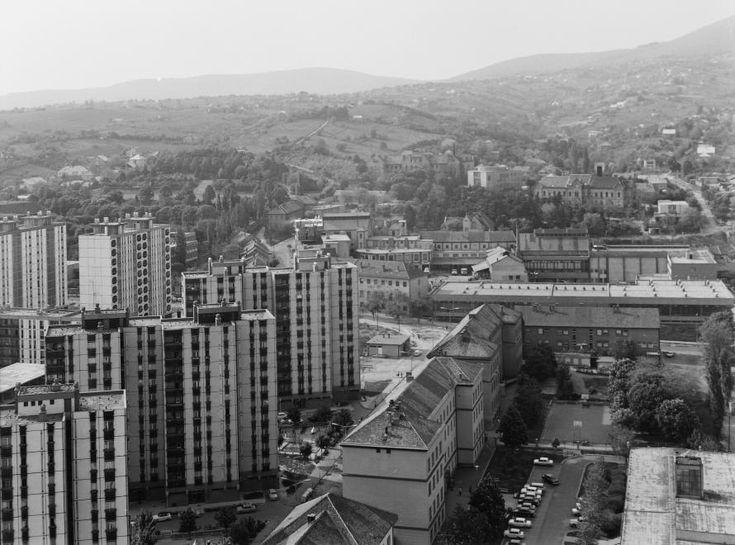 látkép a Magasház tetejéről. Előtérben a Rókus utca házai és a Pécsi Sőrgyár.