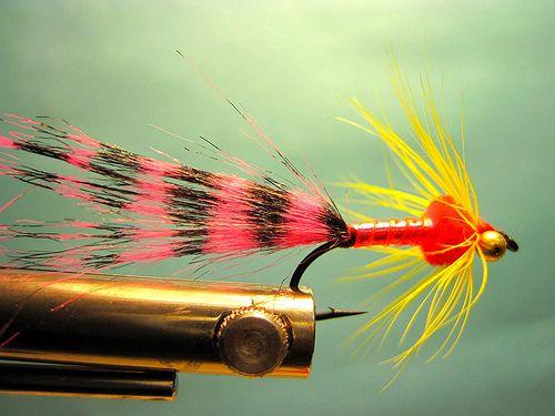 Rob's Zebra Chinook Salmon Fly