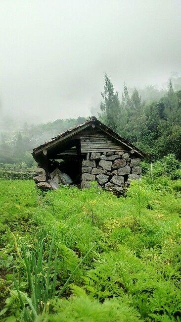 Rumah gubuk yang tersusun dari batu-batu besar yang kami temukan selama berjalan menuju ke air terjun tirtosari