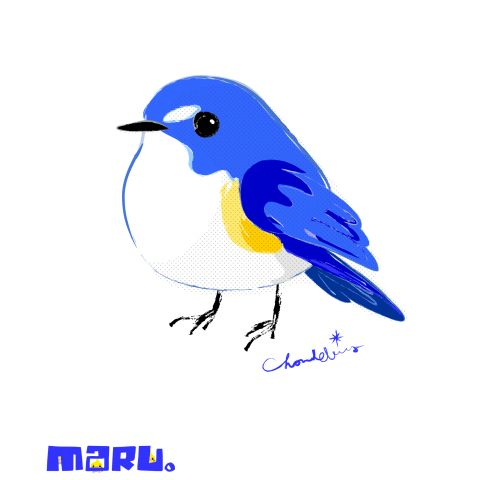 MARU。まるい小鳥 究極形態 ルリビタキ(大) | デザインTシャツ通販 T-SHIRTS TRINITY(Tシャツトリニティ)