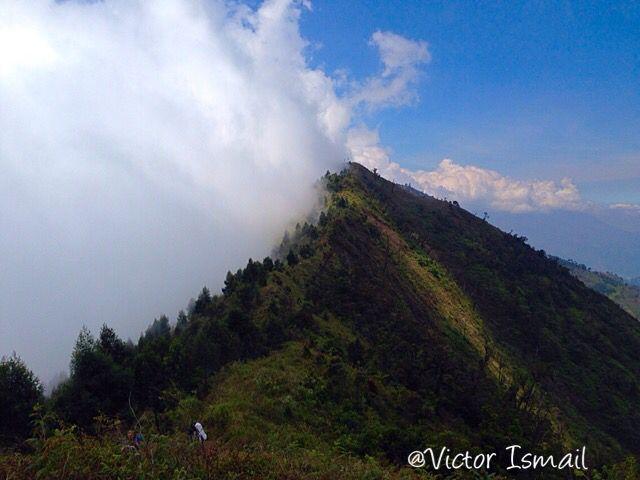 Mount Misty. Wonosobo, Indonesia