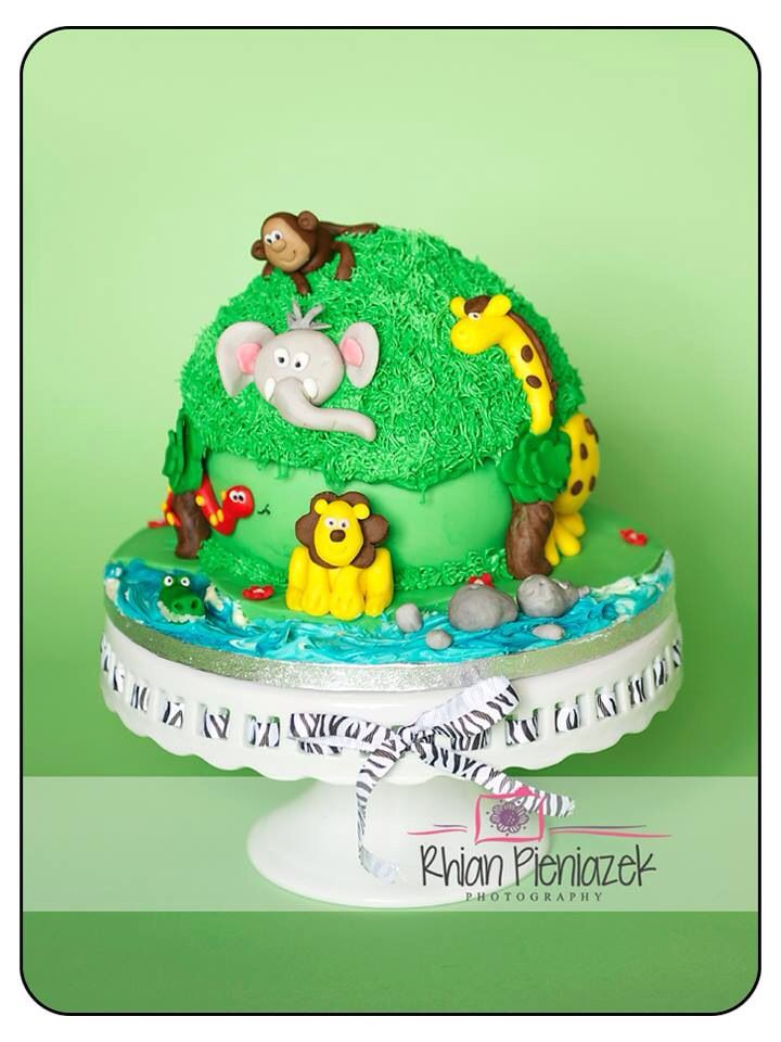 Jungle theme cake. Cakes By Helzbach. Rhian Pieniazek Photography.