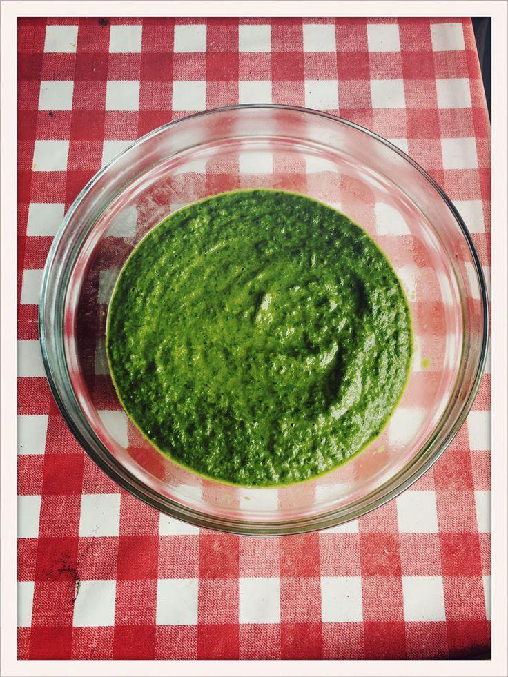 """In meinem Gemüsegarten habe ich Blatt-Mangold, der immer wieder nachwächst. Das finde ich sehr praktisch, denn es ist nach dem Ernten kurze Zeit später wieder welcher nachgewachsen. Er schmeckt fast wie Spinat, ist sehr pflegeleicht und ich nutze ihn für alle meine Spinat-Gerichte. Ist bisher übrigens noch keinem aufgefallen, dass es sich bei """"meinem Spinat"""" um Mangold handelt. Mein Rahm-Spinat ist also eigentlich Rahm-Mangold! ;-)"""