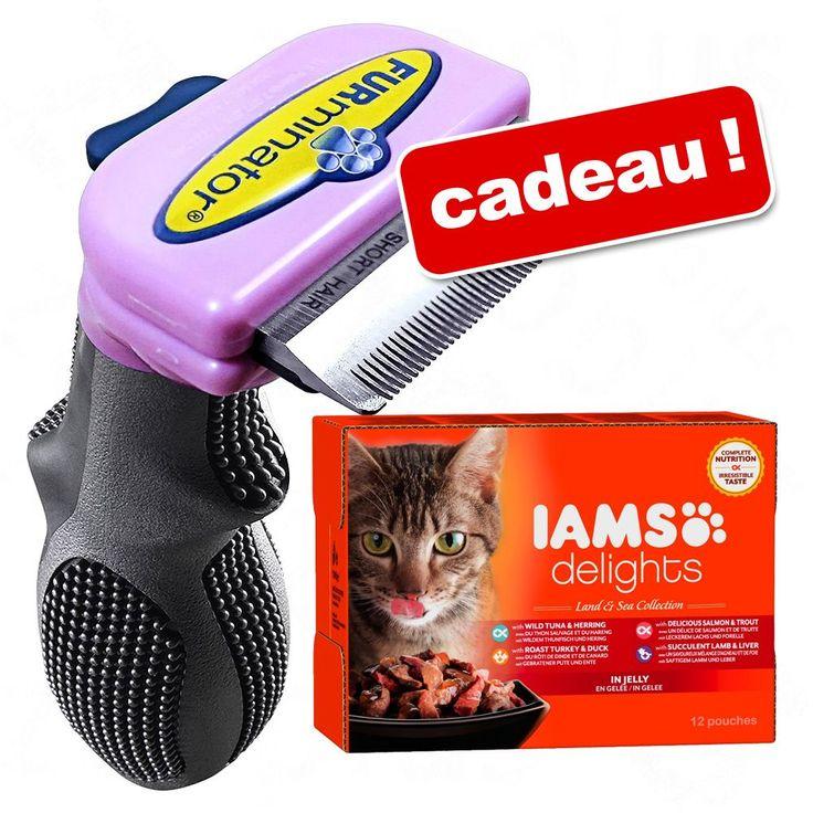 Animalerie  Brosse FURminator  lot IAMS Delights Adult en gelée 12 x 85 g offert !  petit chat poils courts