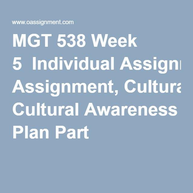 MGT 538 Week 5  Individual Assignment, Cultural Awareness Plan Part 1