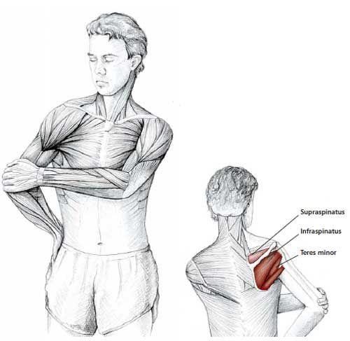 Common Neck & Shoulder Stretching Exercises | FrozenShoulder.com