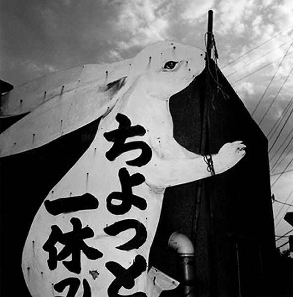 Issei Suda Untitled (Rabbit) 1970s - 1981 vintage gelatin silver print signed in pencil on verso