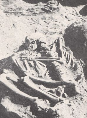 Nephilim Chronicles: Giant Human Skeletons: Giant Human Nephilim Skeletons Found in Ohio Mound