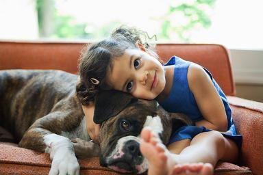 Teaching Children How to Act Around Dogs | Northwest Boxer Rescue ...