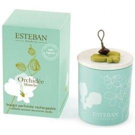 les 43 meilleures images 224 propos de esteban parfum d int 233 rieur sur orchid 233 es