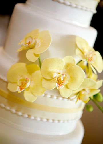Online Eggless Cake Delivery In Tampa
