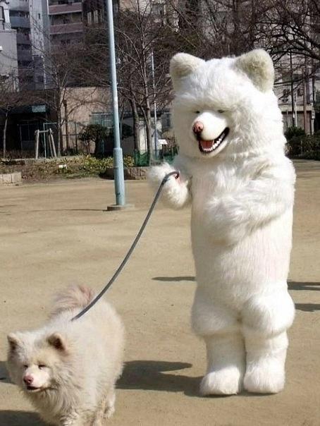 犬が犬を散歩する図。