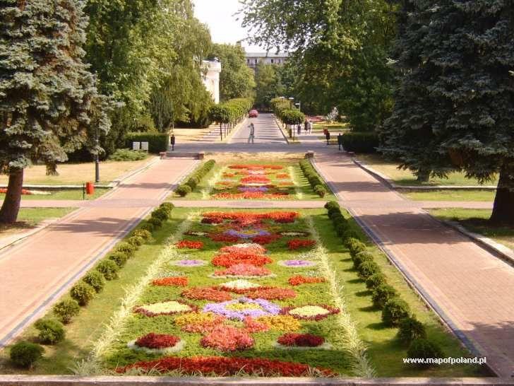 Dywan kwiatowy - Ciechocinek pictures