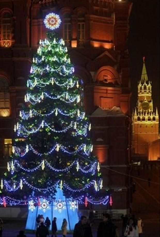 17 Best images about Christmas Lights on Pinterest | Christmas ...:Outdoor christmas lights and christmas trees -,Lighting