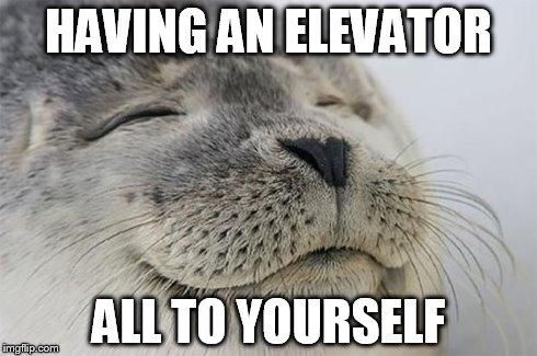 11 Animal Memes All Introverts Can Relate To | Cuteness.com