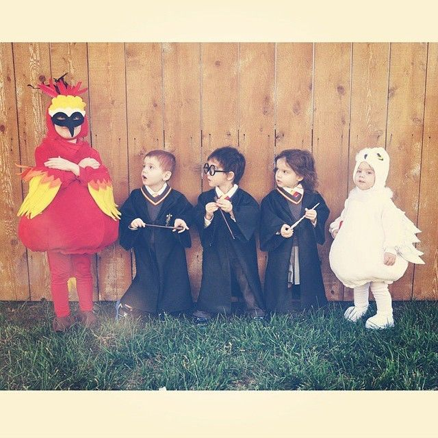 Future cast of @HarryPotterFilm! @stargirl98226, your kids are precious! #HappyHalloween #FanFriday #HarryPotterCostume #HarryPotter #Hedwig #Fawkes #RonWeasley #HermioneGranger