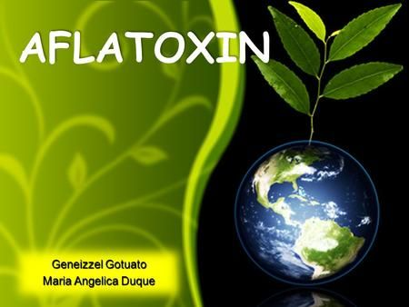 32 best earth powerpoint templates images on pinterest backdrops green earth globe with plant growing recycle reuse recyclable free powerpoint templates ppt themes presentation backgrounds toneelgroepblik Gallery