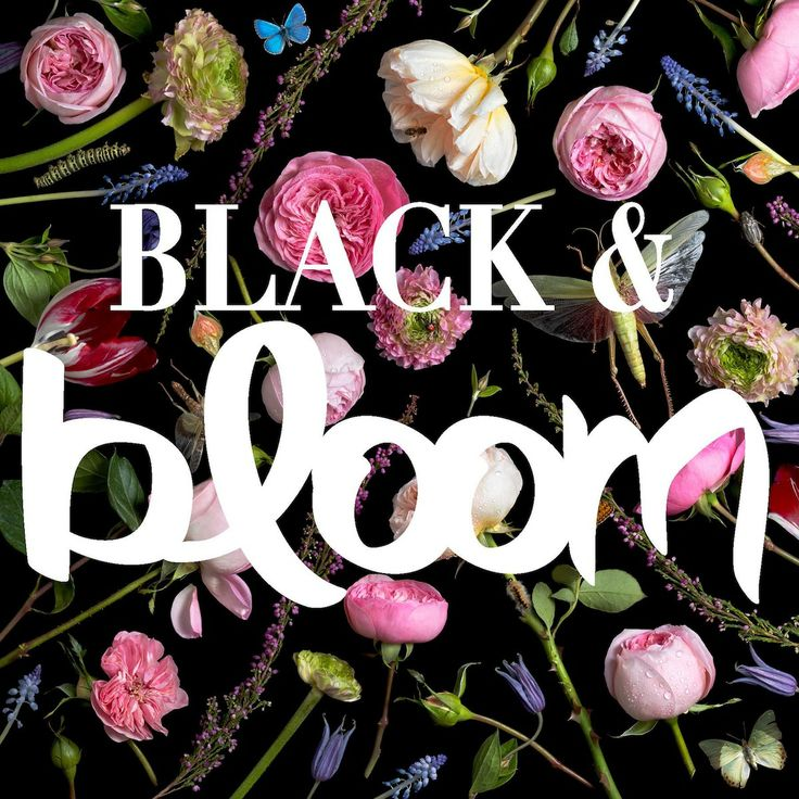 BLACK & BLOOM: a solo show in two parts, featuring photographs by paulette tavormina