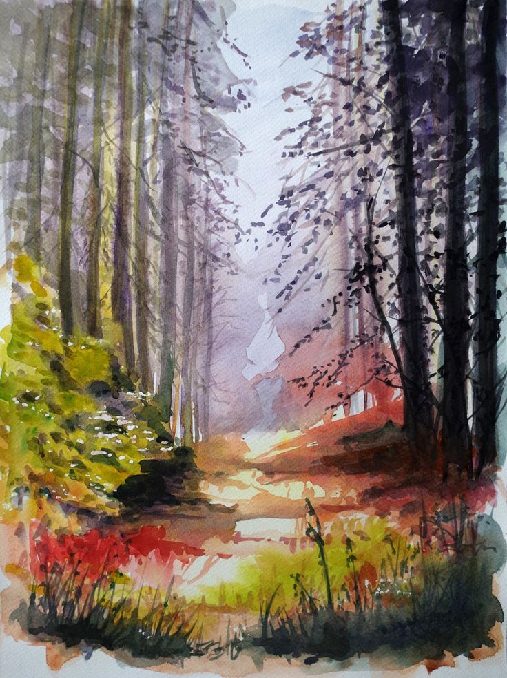 The forest road, BernadetaSudnikowicz, Akwarela Papier 300g, 40 x 30 cm, 2015
