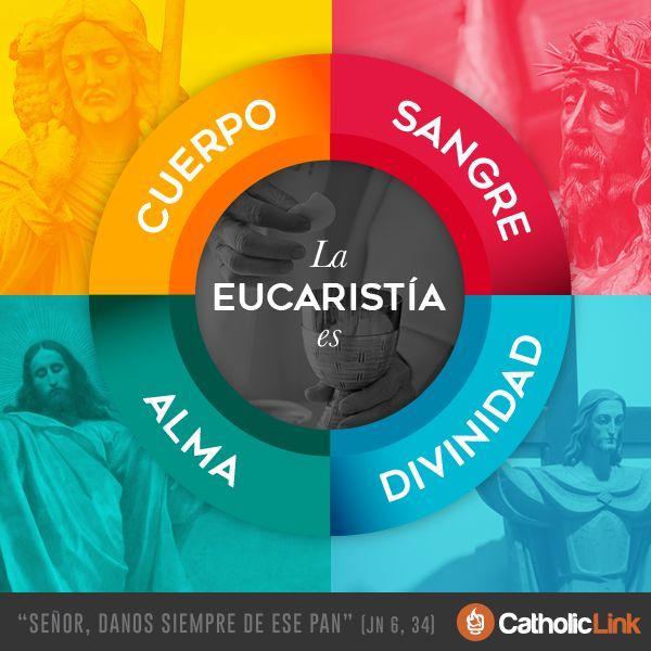 Biblioteca de Catholic-Link - Infografía: ¿Qué es la Eucaristía?